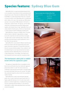 Sydney Blue Gum Timber Flooring